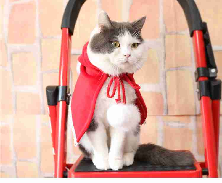 New Year Christmas Teddy pet cat and dog fleece red hood cape costume on sale